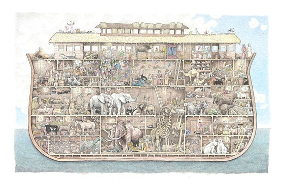 "Image of Noah's Ark 19"" X 17"""