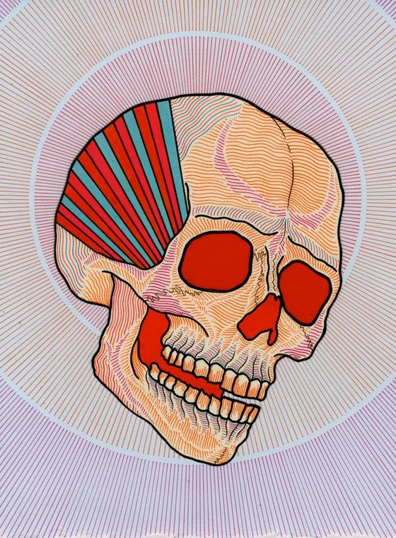 Image of skull 5