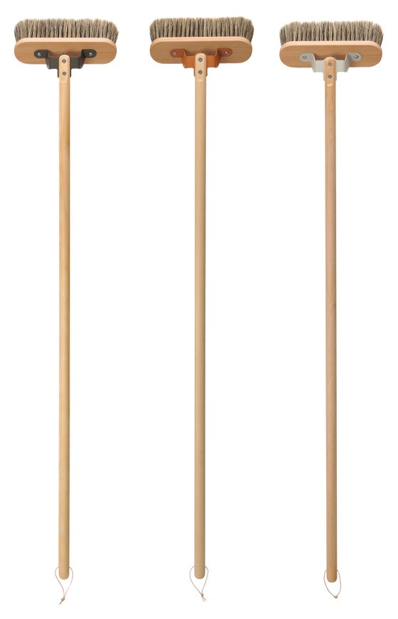 Image of Chiltern broom