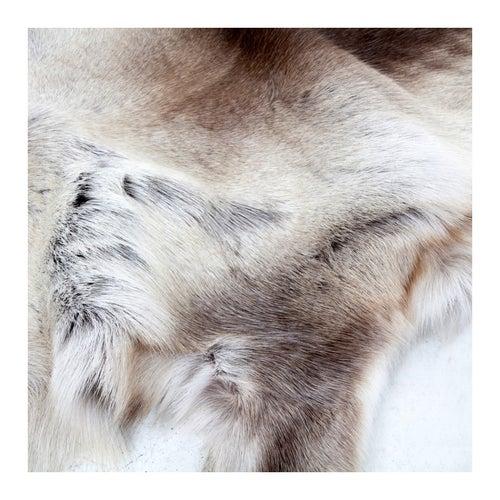Image of Reindeer Natural Hide