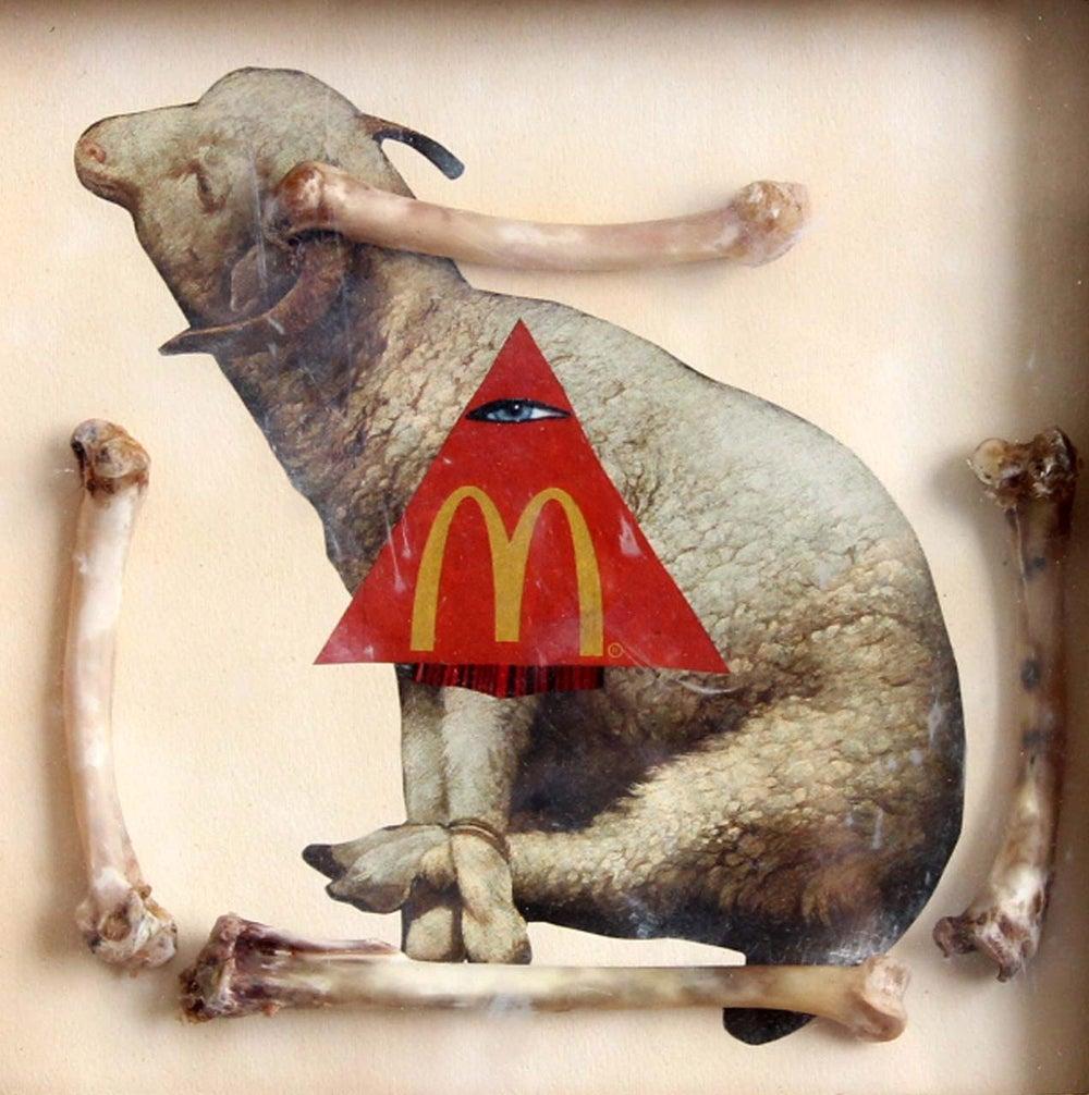 Image of Sheep nuggets