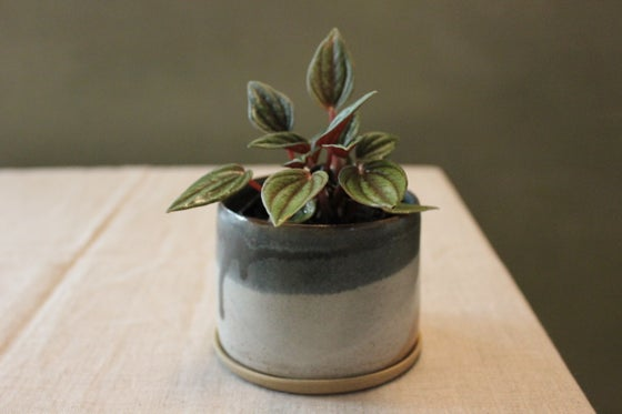 Image of Landscape Planter Small