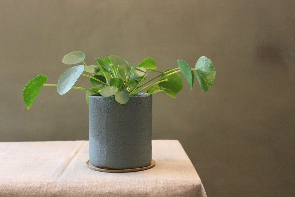 Image of Slate planter Large Tall