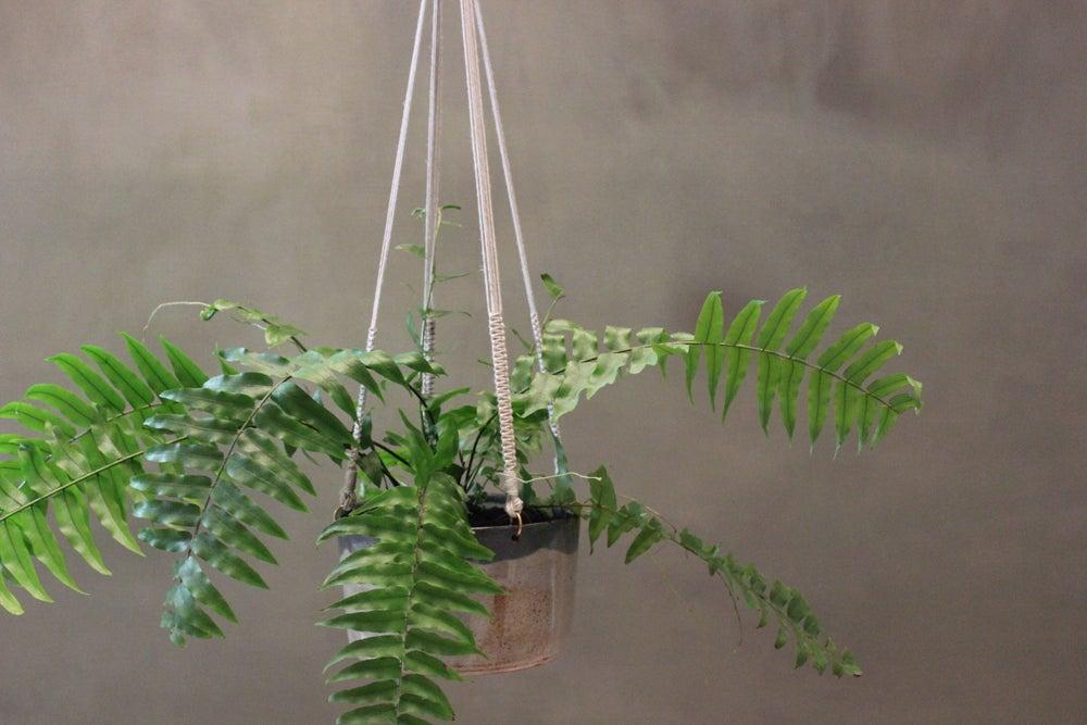 Image of Stoneware Macrame Hanging Planter Large