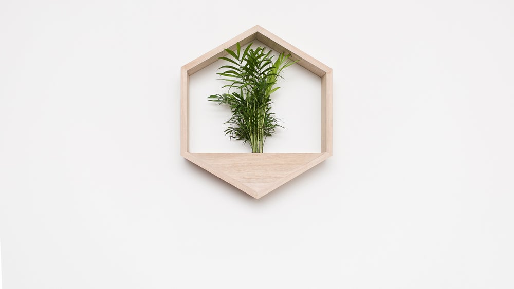Image of Large Hanging Planter