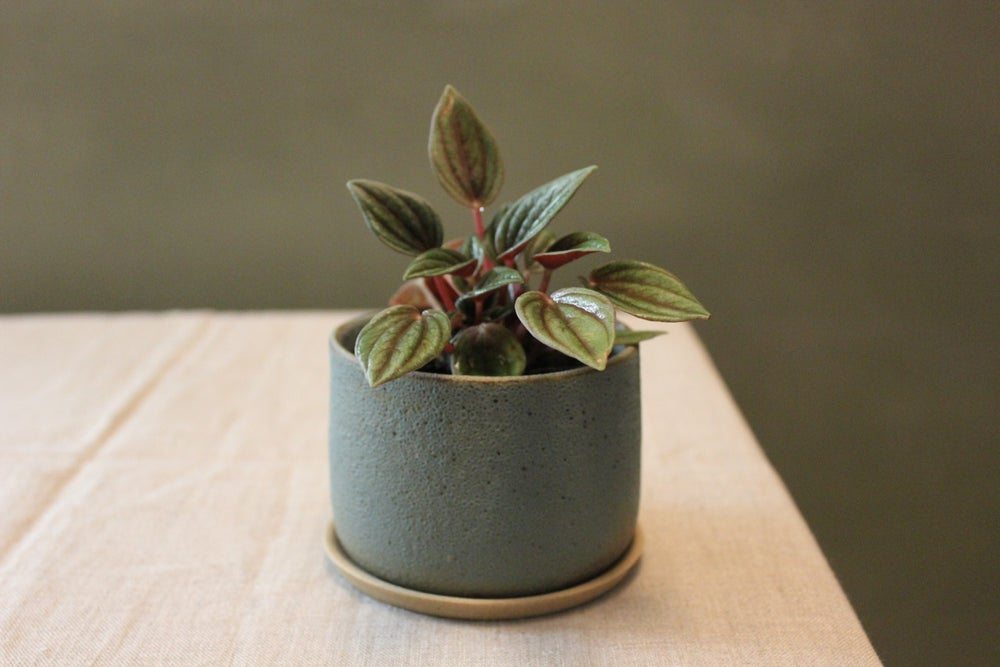 Image of Slate Planter Small