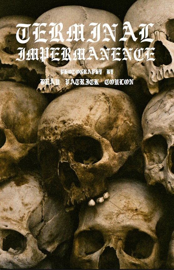 Image of TERMINAL IMPERMANENCE