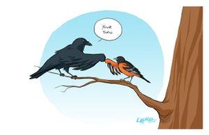 Image of Bmore Birds 2013 Print