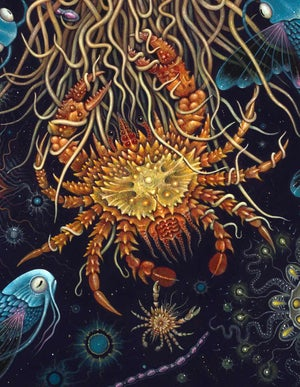 """Image of MEDUSAE ~ 20 x 24"""" Signed Open Edition Print"""