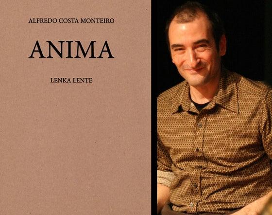 Image of Anima d'Alfredo Costa Monteiro