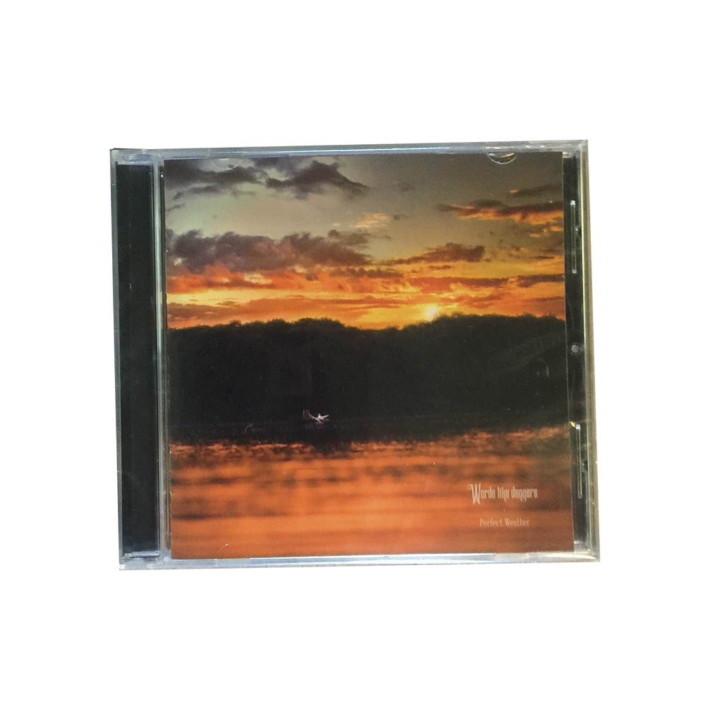Image of Perfect Weather LP