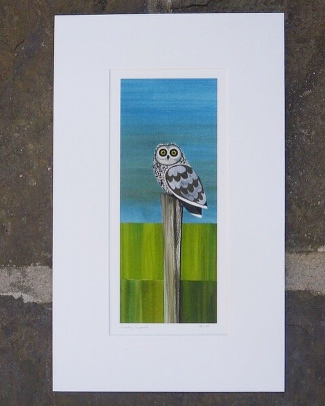 Image of Short eared owl Limited Edition Print