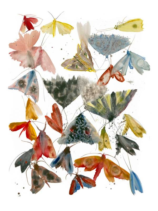Image of Allyson Reynolds - Moths 4