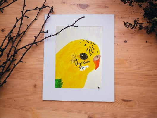 Image of Budgie Portrait - Recessive Pied Light Green