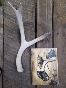 Image of Gingko Leaves (on found wood)