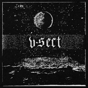 "Image of AA!#70 V-Sect ""Natures Casket"" 10"""
