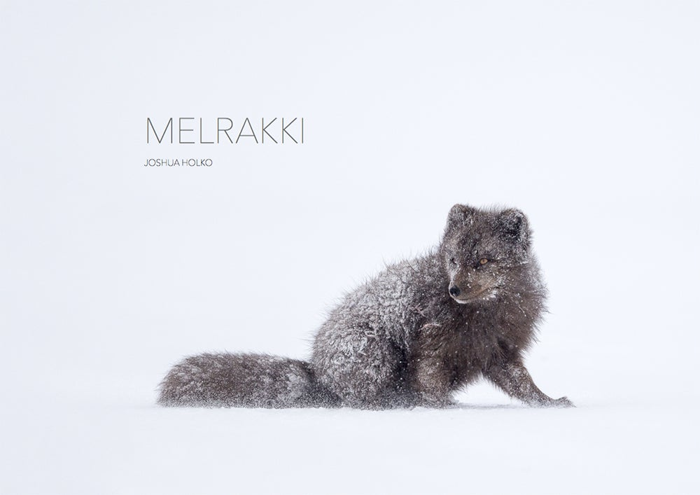 Image of Melrakki Limited Edition
