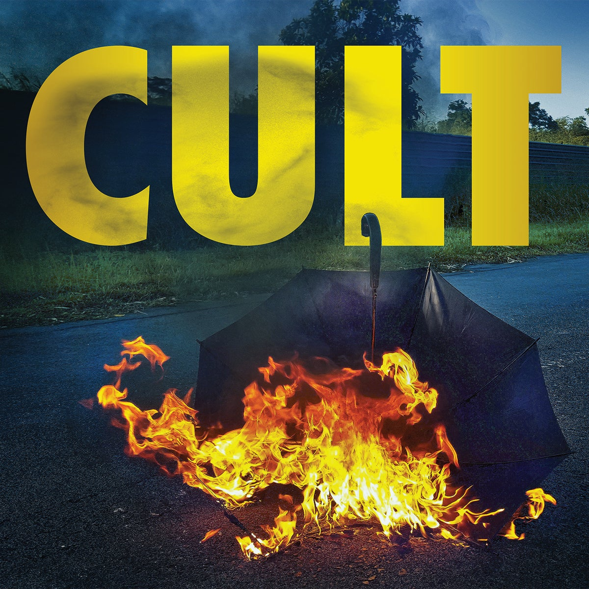 Image of THE CAULFIELD CULT cult