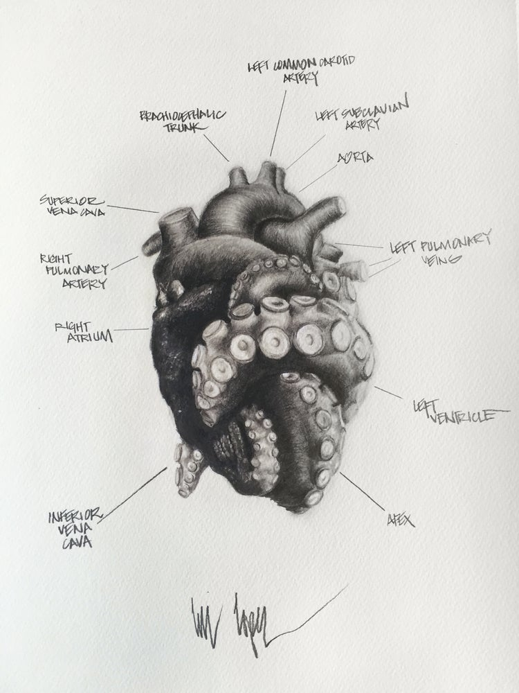 Image of Tentacle heart_