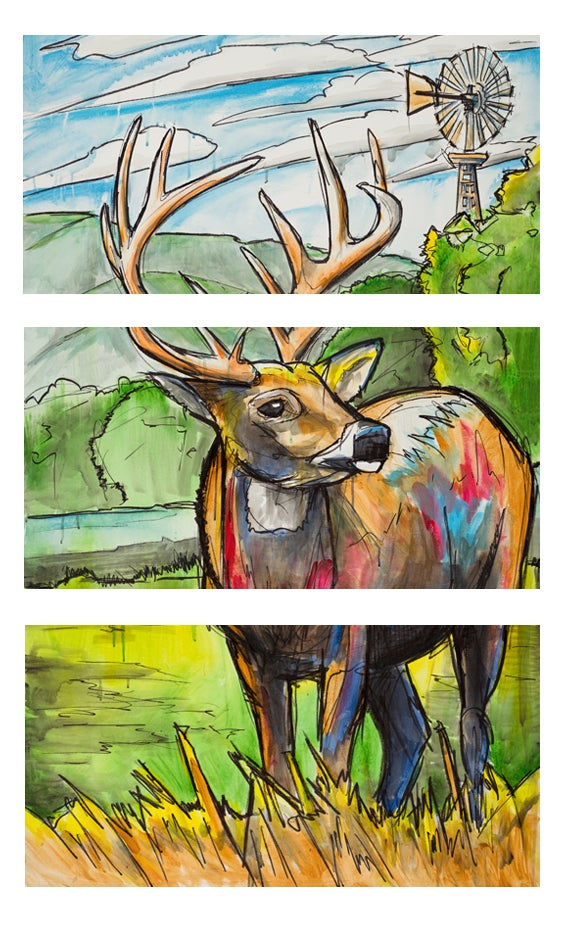 Image of Texas Whitetail Buck Triptych