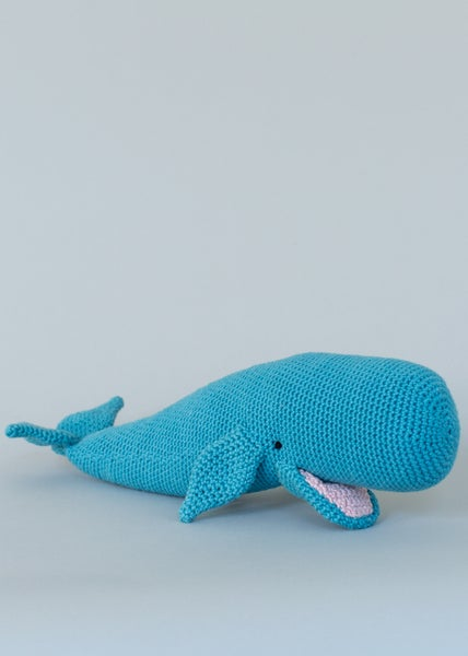Image of Willow the Whale
