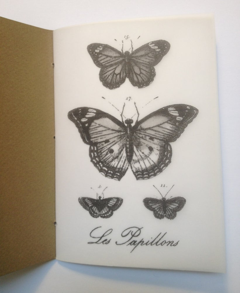Image of Petit Cahier - Butterfly
