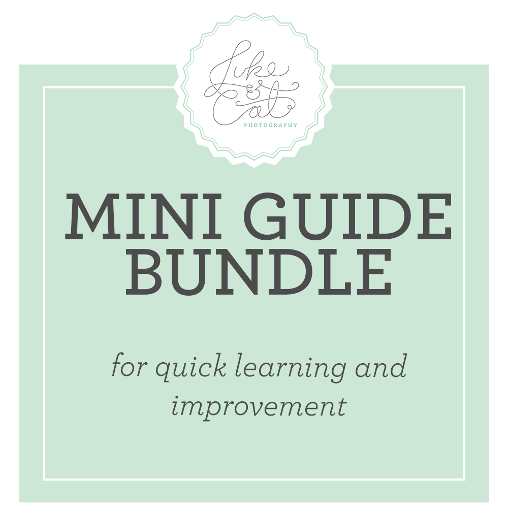 Image of Mini Guides Bundle