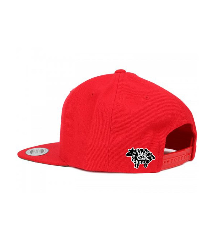 Image of DRIP SNAPBACK (RED)