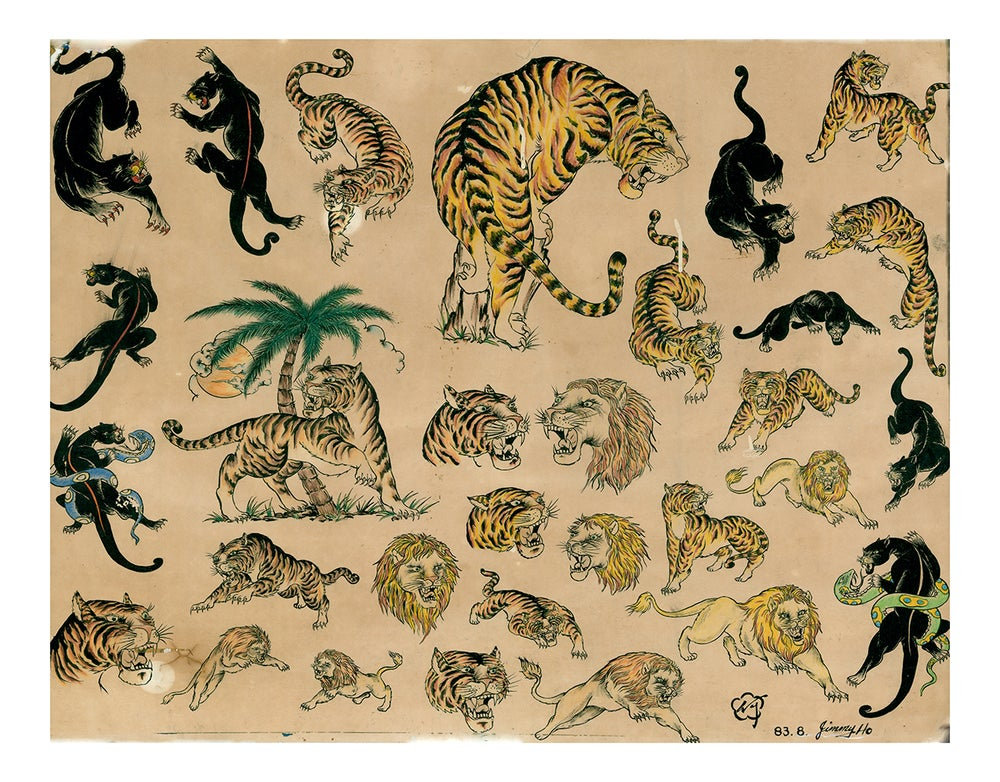 Image of 'Big Cats' by Jimmy Ho ...