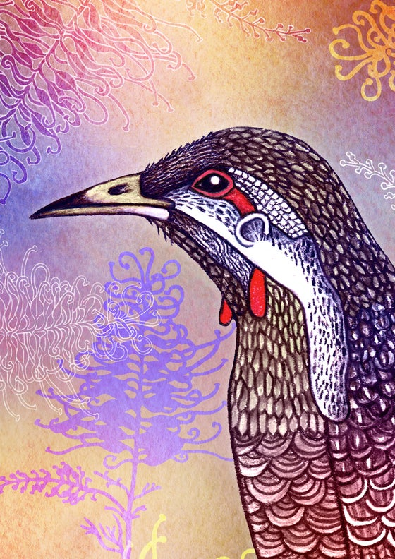 Image of Wattlebird - A4 Giclée art print on HAHNEMUHLE photo rag paper