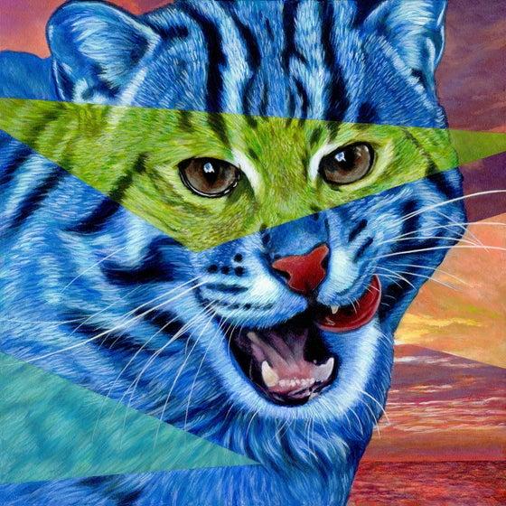 Image of Fishing Cat