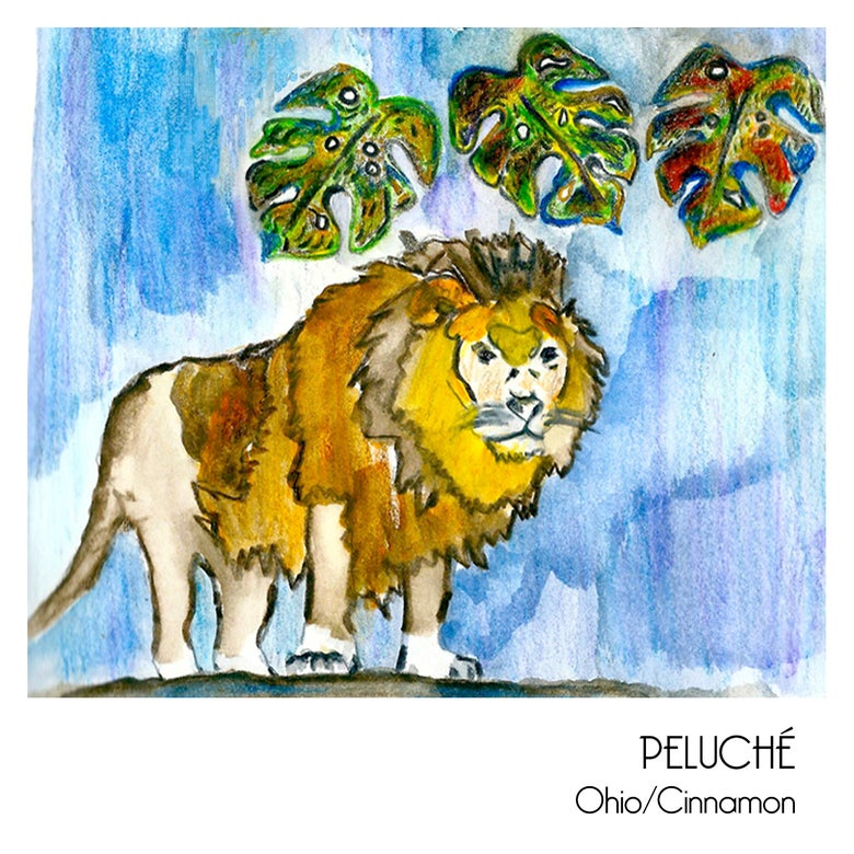 Image of Peluché - Ohio Cassette (SOLD OUT)