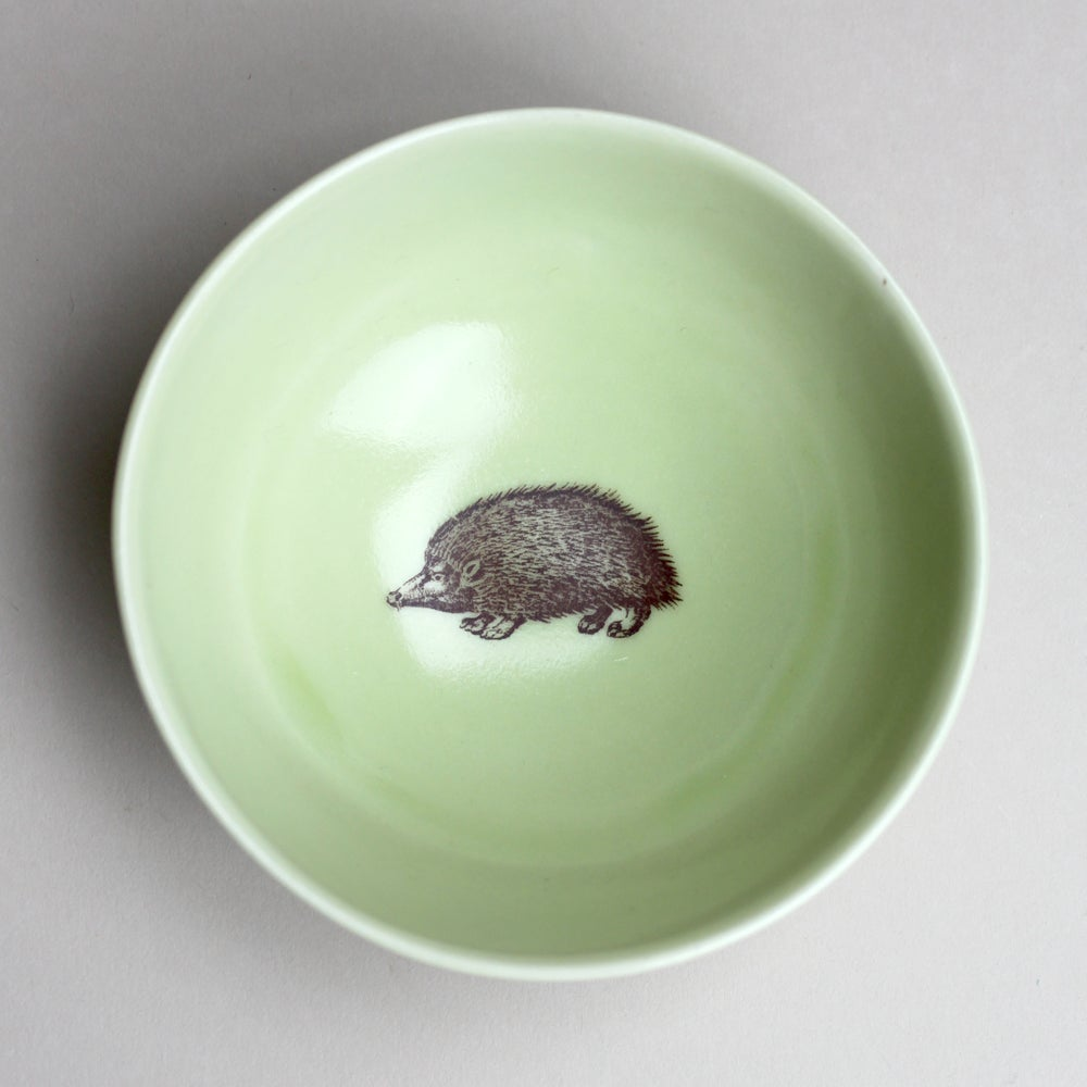 Image of roly poly bowl with hedgehog, avocado