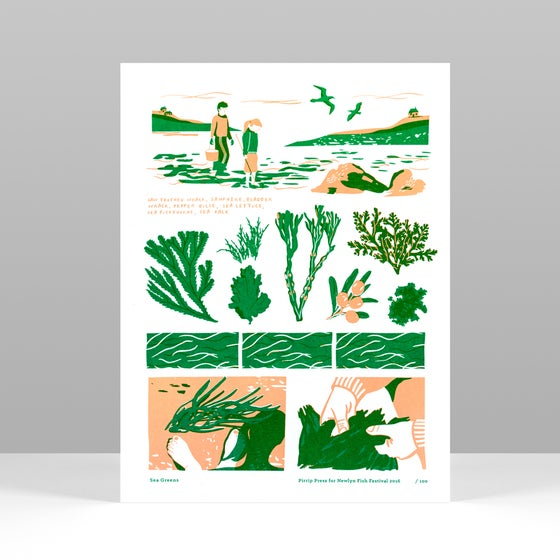 Image of Sea Greens - 2016 Newlyn Fish Festival print