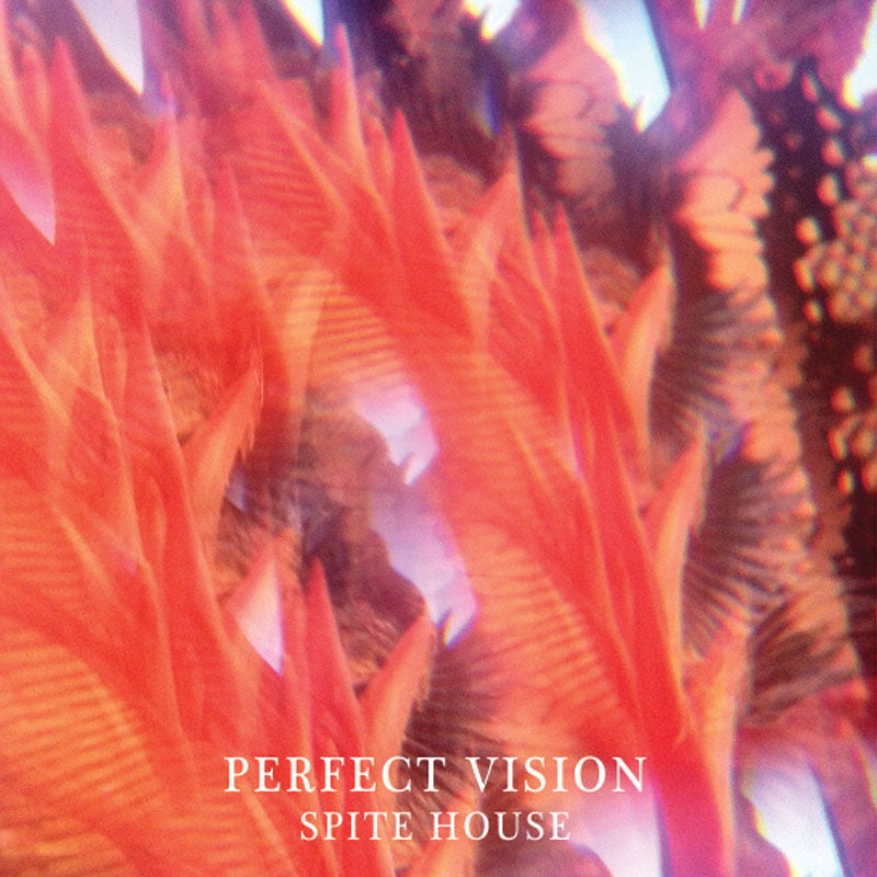 Image of SPITE HOUSE - 'Perfect Visions' EP
