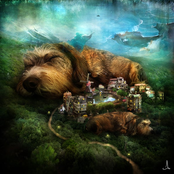 """Sleeping Dogs"" - Alexander Jansson Shop"