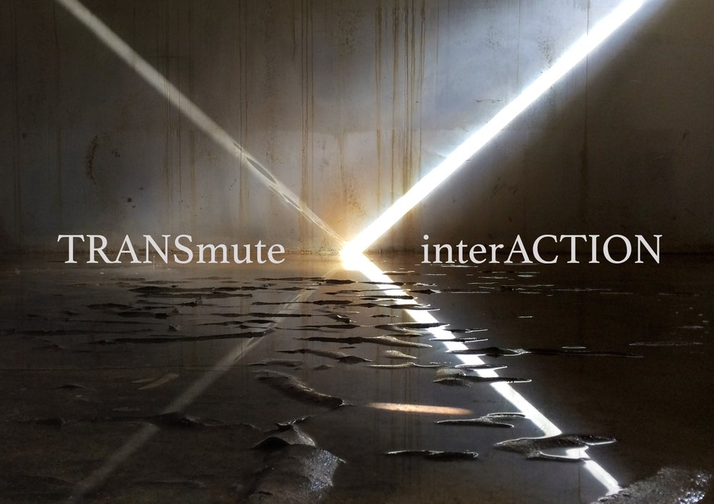 Image of TRANSmute\interACTION