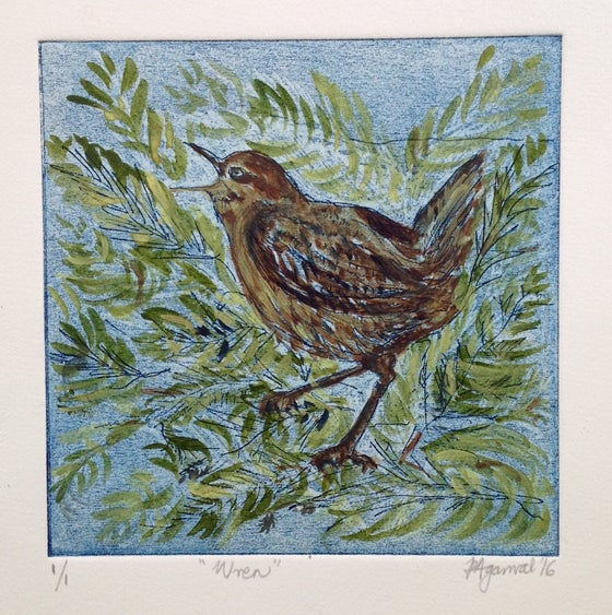 Image of Wren, original unique handpainted etching