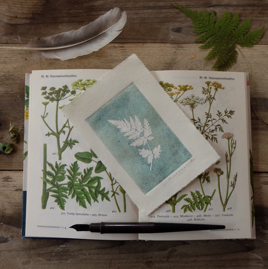 Image of Botanical print, Fern