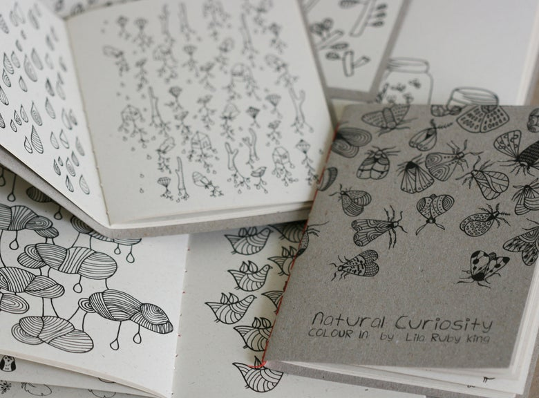 Image of Natural Curiosity Colouring Book