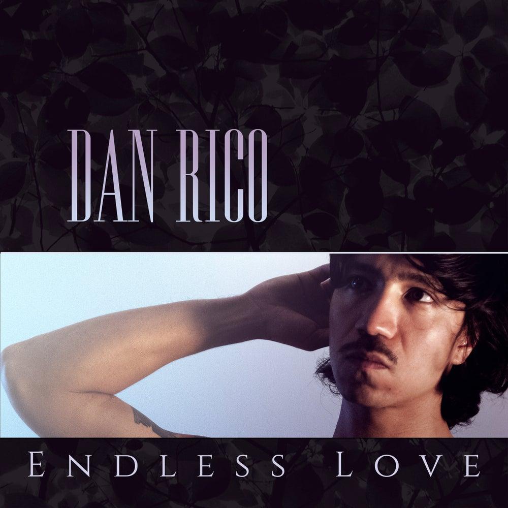 """Image of MP-95 DAN RICO """"ENDLESS LOVE"""" LP"""
