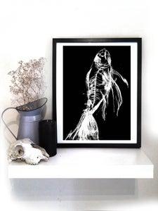 Image of Fish Xray A3 print