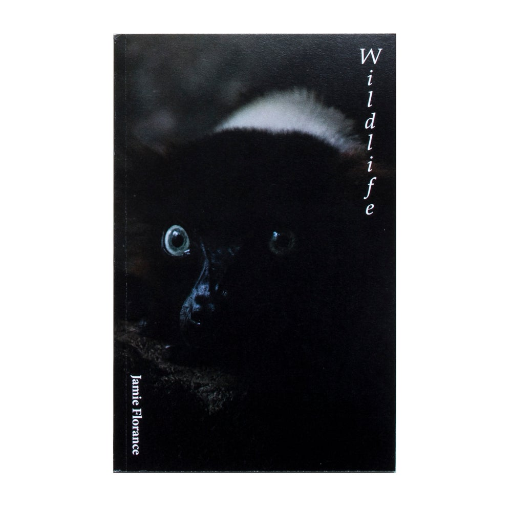 Image of 'Wildlife' Animal x Human photography