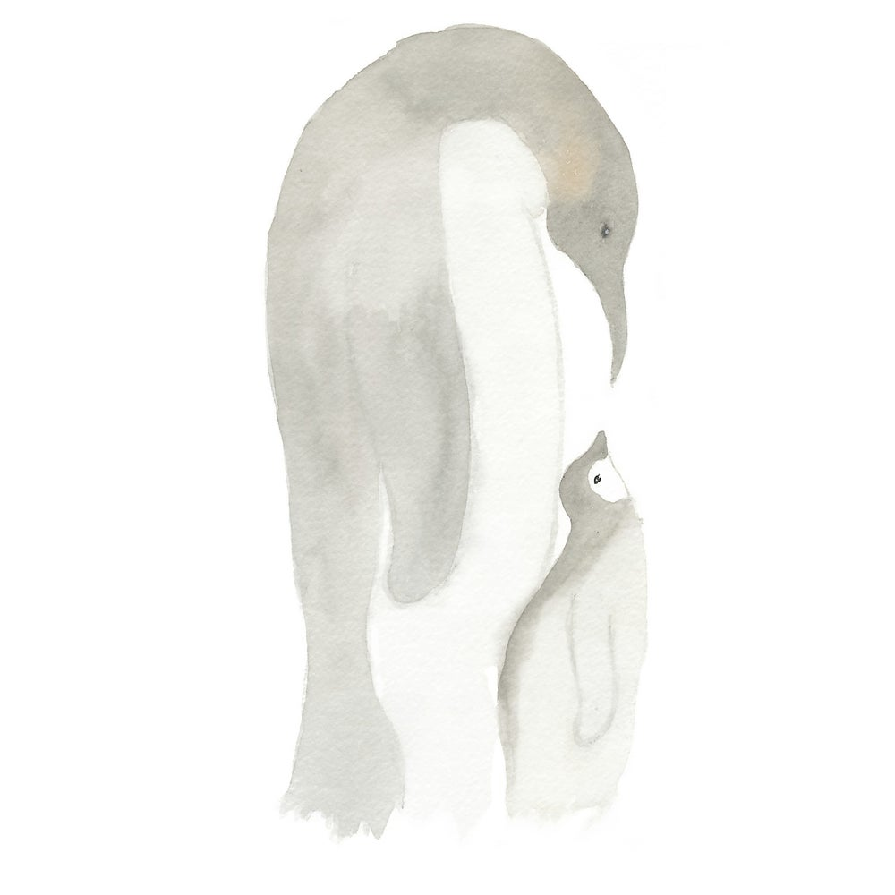 Image of Emperor Penguins