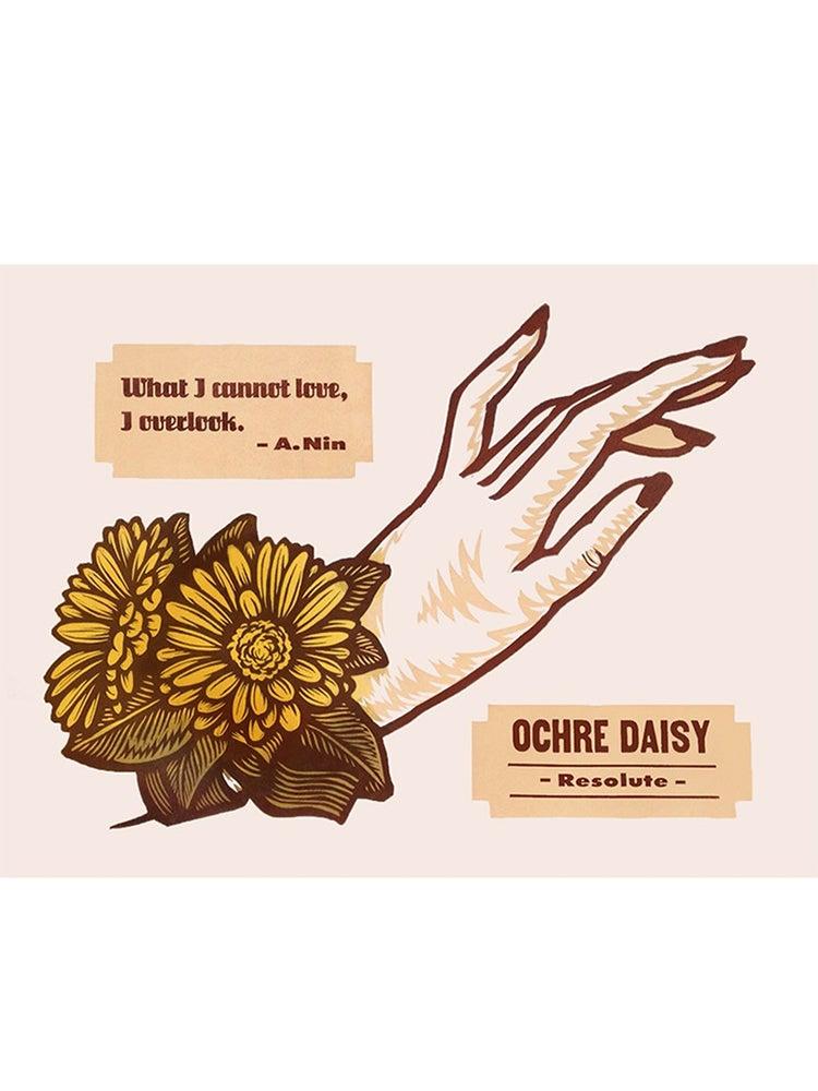 Image of Ocher Daisy
