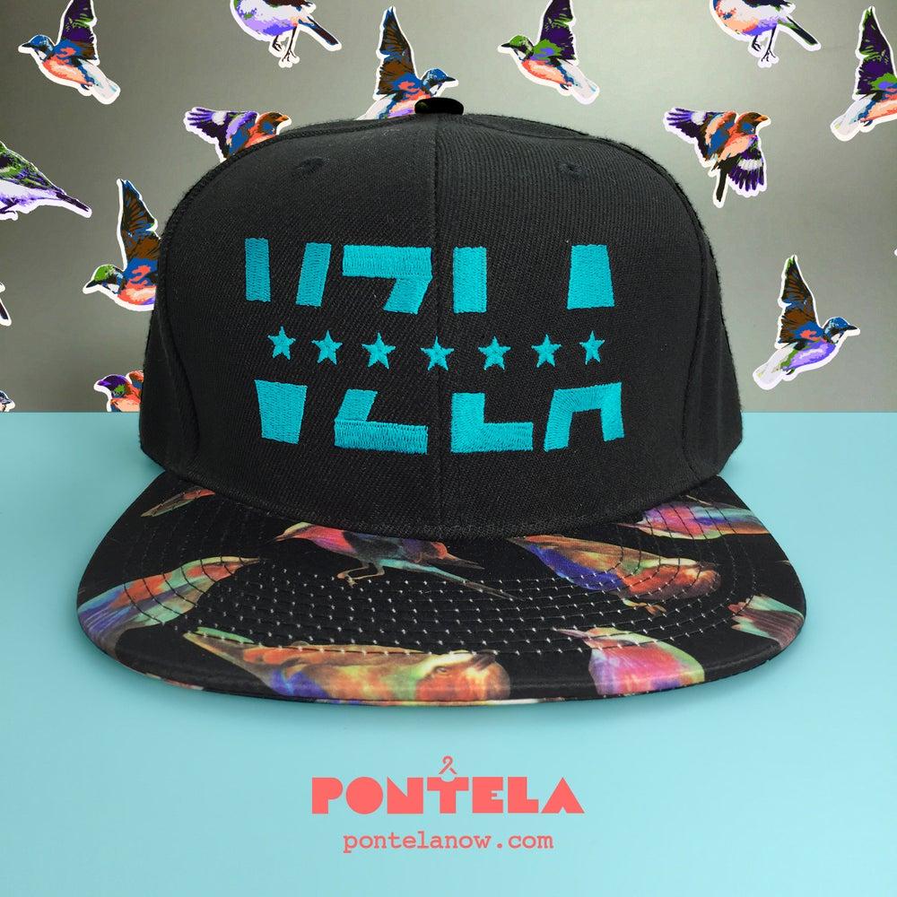 Image of VZLA Blue Birds