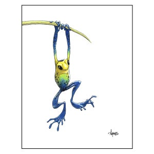 "Image of ""Hanging Frog"" Print"
