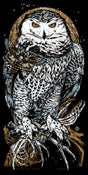 Image of ASKALAPHOS - Snow Owl - art print