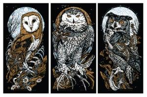 Image of OWL art print set. LECHUZA - ASKALAPHOS - ARIANRHOD *3xprints*