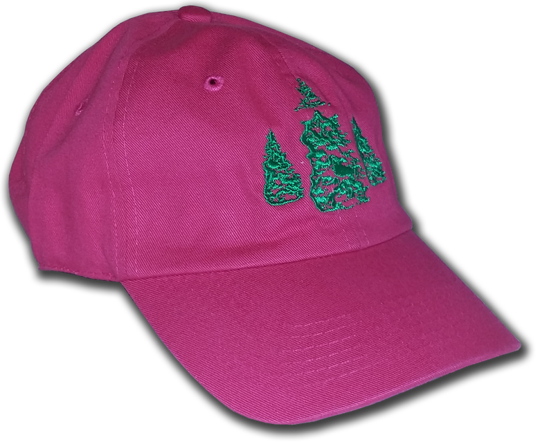 "Image of ""Stinky Pinky""  FOREZT FIT Dad Hat"